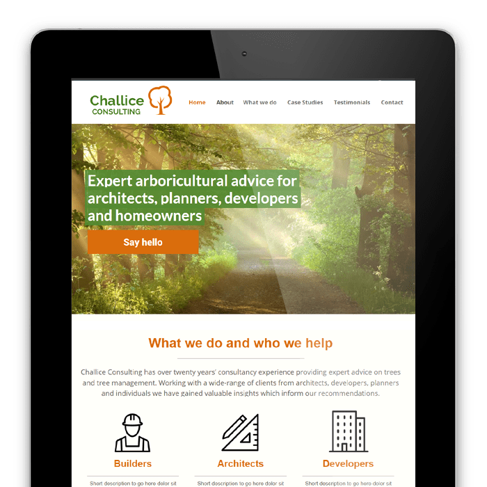 Challice Consulting website example